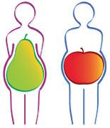 - (Gewicht, Körperstellen, Fettansammlung)