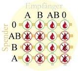 - (Blut, Blutspende, Blutgruppe)