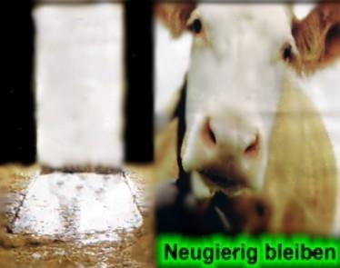 denke selber - (Ernährung, Körper, Milch)