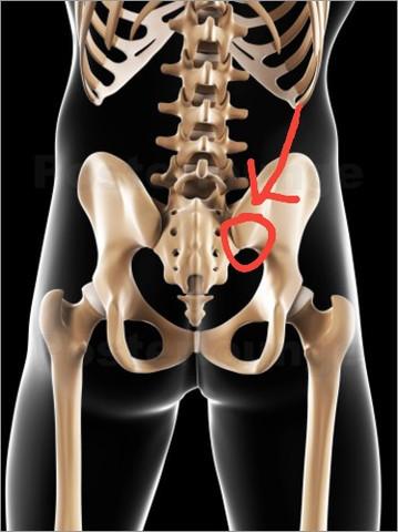 Bild - (Schmerzen, Knochen, Becken)