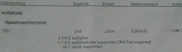 bild3 - (Blutbild, gastritis)