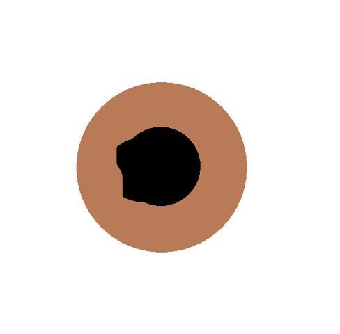 pupille - (Augen, pupille)