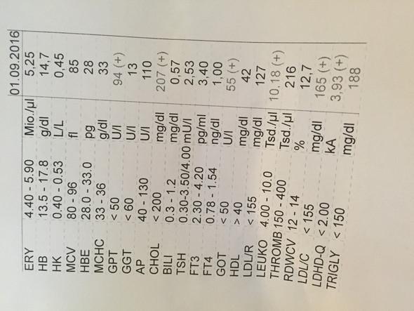 Schlechte Blutwerte / zu wenig Testosteron (mit Bild ...