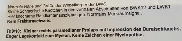 MRT der BWS  - (Schmerzen, MRT, Befund)